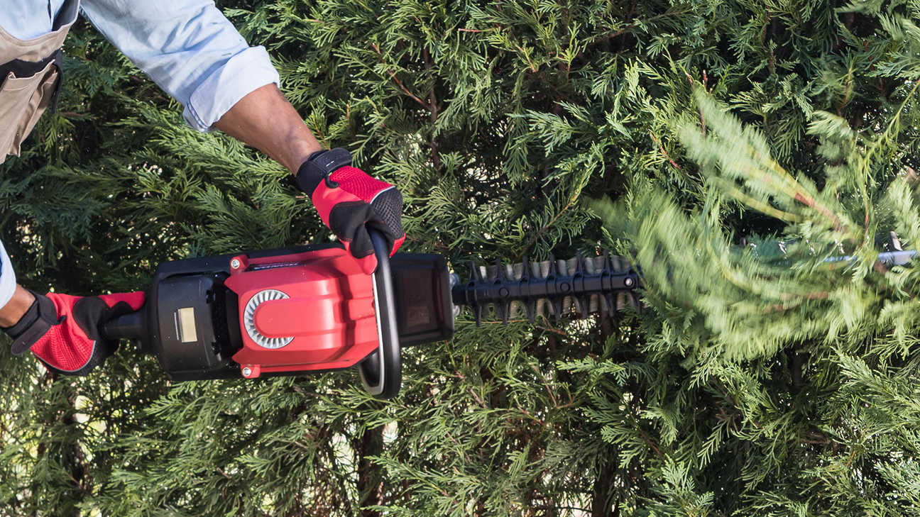 Close up top view of Honda cordless hedge trimmer.